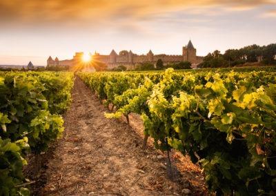 coucher de soleil sur la cité de Carcassonne