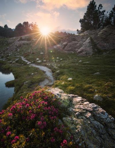 Coucher de soleil sur les rives de l'Estany del Mig au Camporells, Pyrénées-Orientales